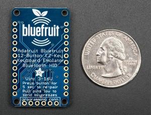 Bluefruit