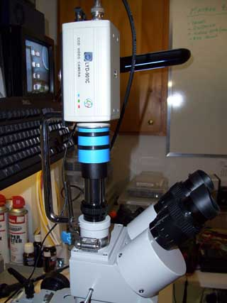 Dissecting microscope with video interface